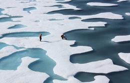 Lượng băng ở Bắc Băng Dương xuống thấp nhất trong vòng 36 năm