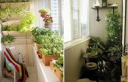 Mẹo tận dụng khoảng ban công nhỏ hẹp ở nhà chung cư