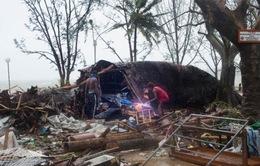 Bão nhiệt đới mạnh cấp 5 tàn phá quốc đảo Vanuatu