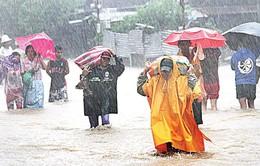 Hàng trăm khách mắc kẹt tại cảng ở Philippines vì bão Linfa