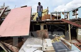 Không có người Việt thiệt mạng vì bão ở Vanuatu