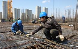Bắt buộc mua bảo hiểm trong đầu tư xây dựng