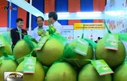 Việt Nam có khoảng 40 sản phẩm được bảo hộ chỉ dẫn địa lý