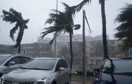 Lốc xoáy trong bão Mujigae tàn phá Trung Quốc