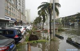 Trung Quốc: 15 người thiệt mạng hoặc mất tích do bão Mujigae