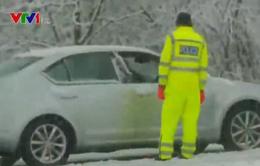 Bão tuyết cản trở hoạt động khắc phục hậu quả lũ lụt tại Anh