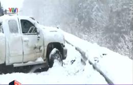 Mỹ: Bão tuyết khiến hơn 70 xe ô tô đâm liên hoàn