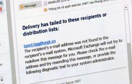 Bảo mật thông tin trên Internet bị xem nhẹ