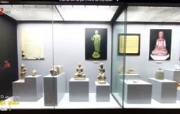 Bảo tàng 3D được thiết kế như thế nào?