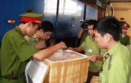 Ninh Bình: Phát hiện xe khách vận chuyển hơn 700kg nội tạng động vật trái phép