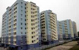 Doanh nghiệp bất động sản thành lập mới đứng đầu các lĩnh vực