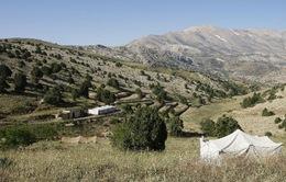 5 công dân Czech bị bắt cóc tại Lebanon
