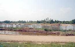 Tháng 6/2015, bến xe liên tỉnh KĐT Nam Cần Thơ được đưa vào hoạt động