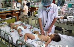 Bệnh tay chân miệng tại TP.HCM tăng 400 ca/tuần