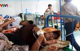 Gia Lai: Hơn 100 người nhập viện vì ăn thịt bò bệnh