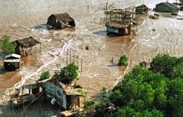 Nỗi trăn trở trước những tác động của biến đổi khí hậu