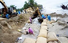 Xử lý khẩn cấp tình trạng sạt lở bãi biển Cửa Đại