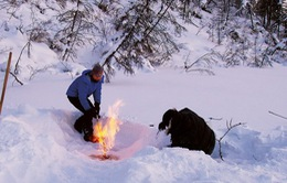 Biến đổi khí hậu làm Nga mất đi hơn 450 km2 lãnh thổ hàng năm