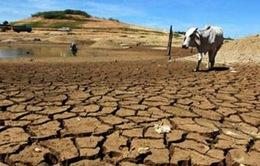 Pakistan trước những nguy cơ biến đổi khí hậu
