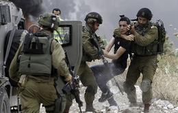 Israel bắt giữ hàng chục người Palestine
