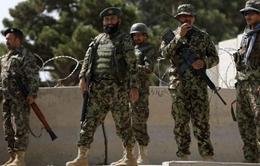 Quân đội Afghanistan tiêu diệt 35 phiến quân