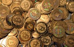 Gand - thành phố đầu tiên của Bỉ chấp nhận thanh toán bitcoins