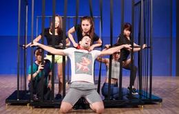 Bước nhảy hoàn vũ 2015 - Liveshow 6: Đêm nhạc kịch (21h10, VTV3)