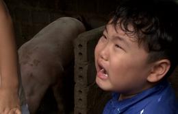 Bố ơi! Mình đi đâu thế? 2: Con trai Xuân Bắc khóc nức nở khi bị bố mắng