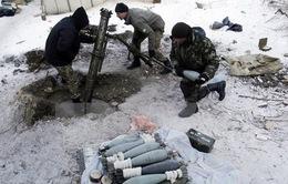 Bosnia bắt 5 đối tượng nghi chế tạo bom