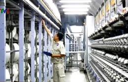 Hiệp hội Bông sợi Việt Nam kiến nghị điều tra chống bán phá giá sợi filament