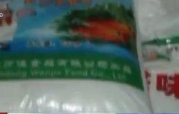 Bắt gần 70 tấn bột ngọt không rõ nguồn gốc tại TP.HCM