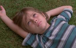 Phim làm trong 12 năm Boyhood ra mắt khán giả Việt vào tháng 3