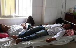 Cần Thơ: 1 người chết, 4 người cấp cứu vì ăn phải con sam
