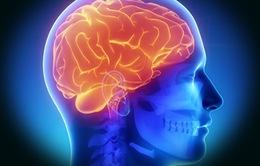 Thiết bị kích thích não dành cho bệnh nhân Parkinson