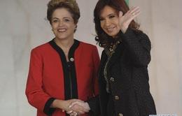 Hội nghị thượng đỉnh Mercosur lần thứ 48 tại Brazil