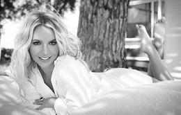 Britney Spears sẽ xuất hiện tại VMAs 2015?