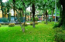 Mô hình bệnh viện xanh - đẹp ở bệnh viện Saint Paul Hà Nội