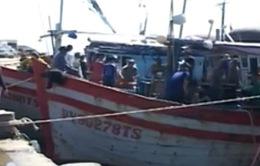 Xây dựng trung tâm nghề cá đầu tiên tại Khánh Hòa