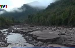 Chile: Núi lửa phun trào ảnh hưởng tới chăn nuôi cá hồi