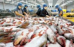 Kim ngạch xuất khẩu cá tra 9 tháng đầu năm 2015 giảm 9,3%
