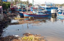 Bình Định: Ngư dân khó khăn vì cửa biển bị lồi lấp