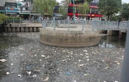TP.HCM: Cá chết hàng loạt tại kênh Nhiêu Lộc - Thị Nghè