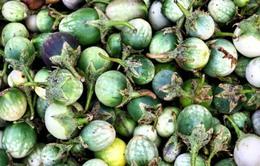 Cà đắng - Món ăn đặc trưng của người Ê Đê, Tây Nguyên