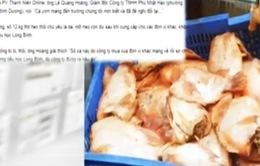 Dư luận lên án gay gắt vụ đưa cá, thịt thối vào trường học