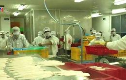 Nâng cao tiêu chuẩn cá tra xuất khẩu: Nhiều quan điểm trái chiều