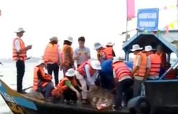 Bảo vệ nguồn cá tự nhiên ở An Giang