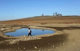 Thiếu nước trầm trọng tại California, Mỹ