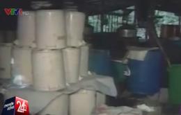 Colombia thu giữ hơn 2 tấn cần sa