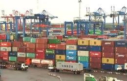 Khẩn trương xử lý hàng hóa tồn đọng tại cảng biển, cửa khẩu