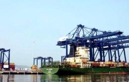 Cảng Cái Lân lỗ hơn 1triệu USD/tháng